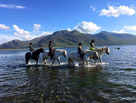 Ulva Ferry Community Transport Pony Trekking